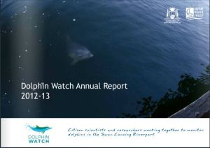 Click here to view the Dolphin Watch Annual Report 2012-13
