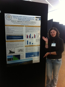 My SMM conference poster describing pygmy blue whale interactions with vessels in Geographe Bay