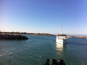 Heading out from Dongara for another day of whale research!